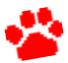 スクリーンショット 2013-05-29 20.07.01